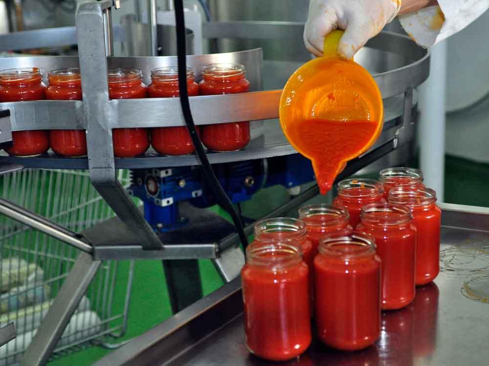Elaboración de conserva de tomate frito